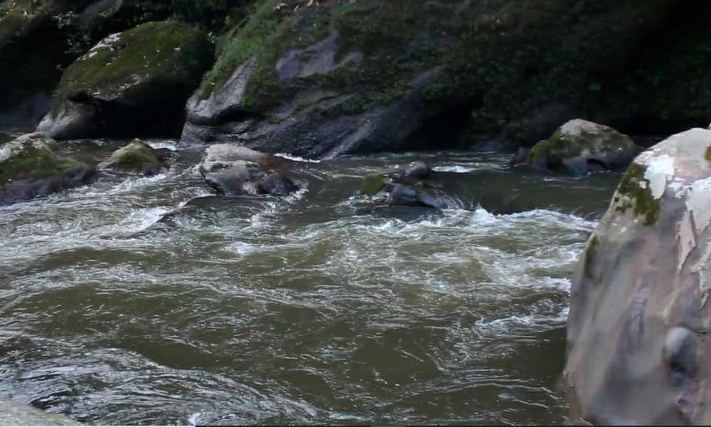 Río Sarabando, Reserva Natural y Ecoturística El Horeb, Belén de los Andaquíes, Caquetá. Foto por: Jhordy Gutierrez.