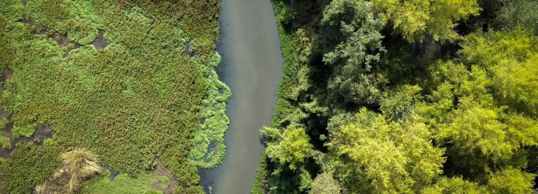 Foto Van-Der Hammen Reserva