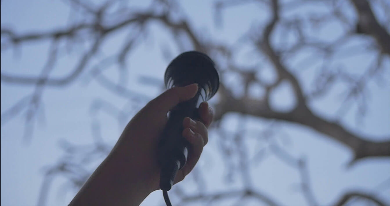 NEW SHORT DOCUMENTARY:<yellow> SOUNDS FROM YOUR WINDOW</yellow>